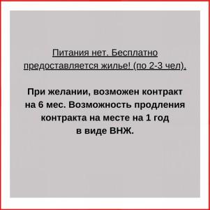 WhatsApp Image 2020-06-12 a5t 13.19.16 (1)